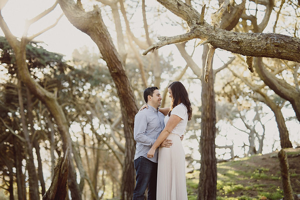 Katie+Kayvon_Engaged - 0002