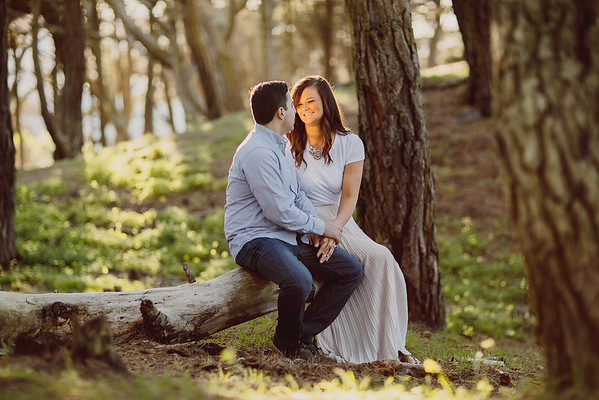Katie+Kayvon_Engaged - 0014