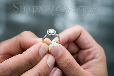 Engagement-KM-IMG_0091