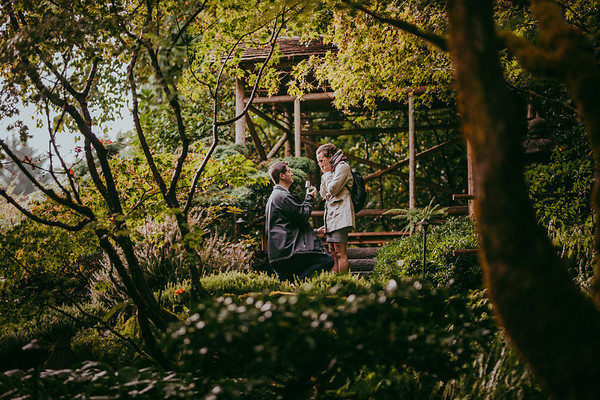 Matt & Krystal {Proposal}