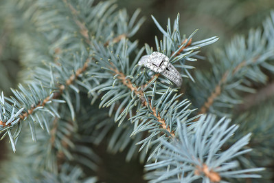 Maxey & Erb Engagement ~1 2014-026