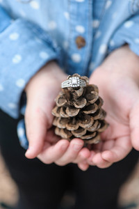 Maxey & Erb Engagement ~1 2014-022