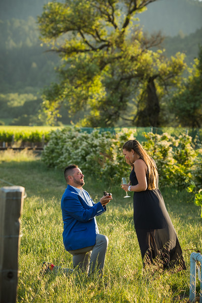 Rafael Proposal