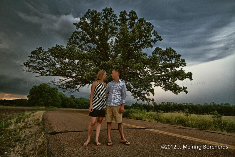 300 year old Burr Oak In Columbia MO USA