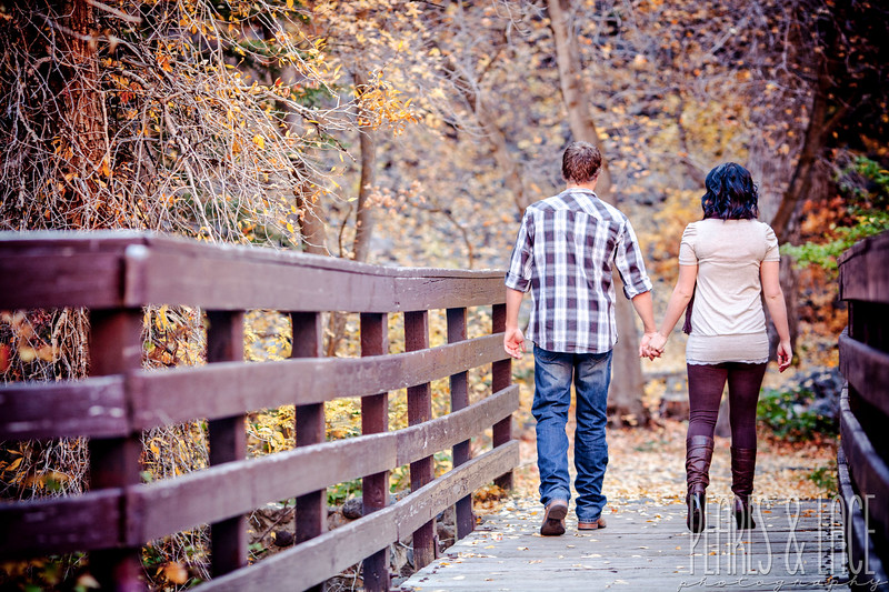 Sheena & Josh Big Cottonwood Engagement Session