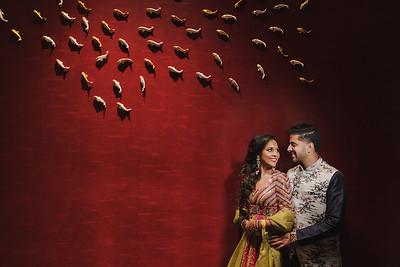 Sunita & Ravi Sangeet/Garba