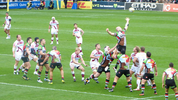 Rugby - London Harlequins vs Sale Sharks... Go Quins!