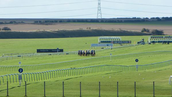 Horses at the 5 furlong mark of a 7 furlong (7/8 mile) race