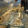 Skeleton of a Roman found at the Roman bath site