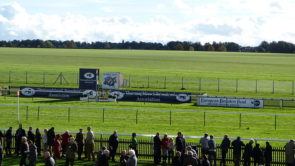 Finish line at Newmarket