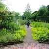 formal side garden