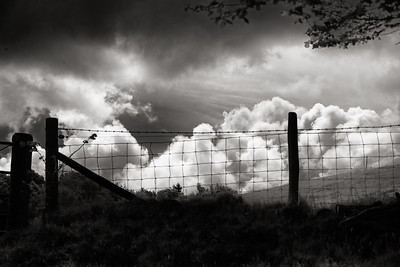 Clouds & Fence, Lockhurst Hatch Farm, Guildford, England