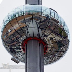 British Airways i360 in Brighton