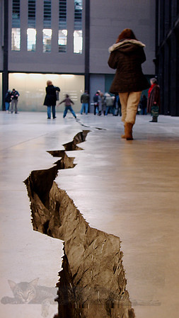 Shibboleth by Doris Salcedo