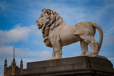 Lion of Westminster, London