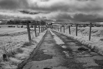 Country Lane near Ross Abbey