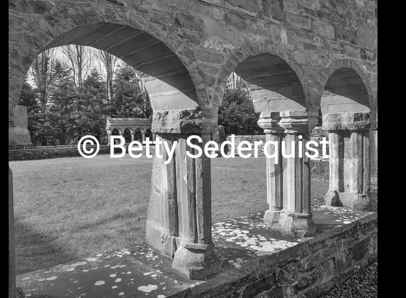 Cloisters, Ballintubber Abbey