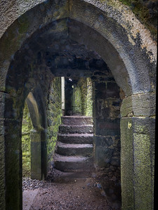 Ancient Stairs, Ross Abbey