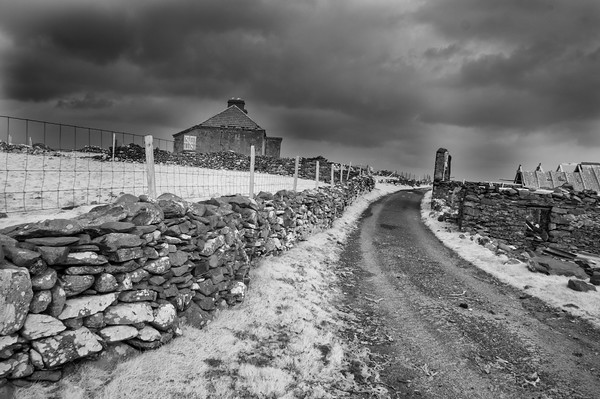 Infrared View of Road and Cottages, Barnabaum Point
