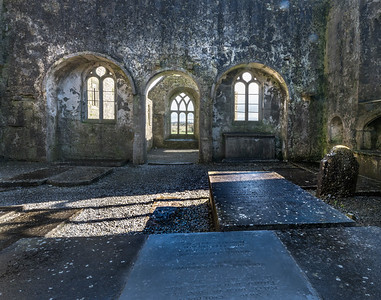 Sunlight and Shadows, Ross Abbey, Ireland