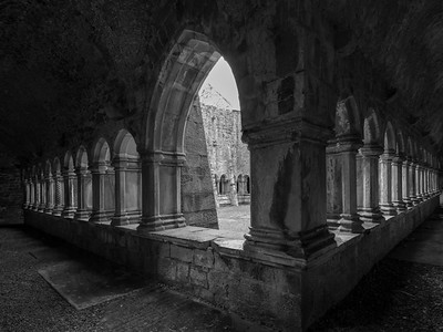 Cloisters, Quin Abbey