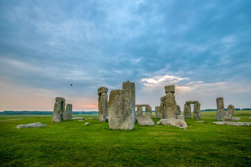 Stonehenge Dawn Bird