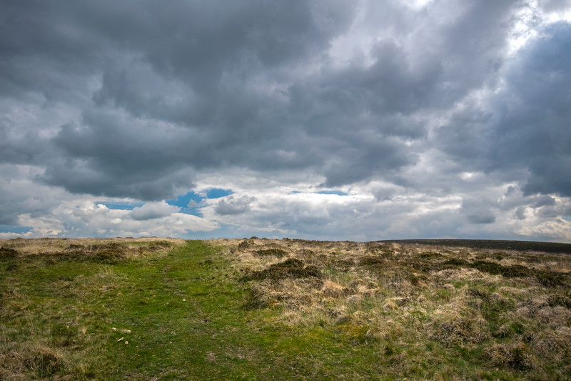 Dartmoor – Green Trail