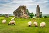 Neolithic stone circles and meadow with sheep grazing in the village of Avebury, Wiltshire, England, Europe.