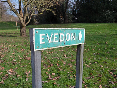 Evedon Street