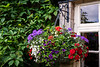 A window with flowers in a stone home in the Cotswold village of Bibery, Gloucestershire, England, Europe.