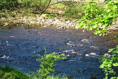 River Wharfe runs right by Bolton Abbey