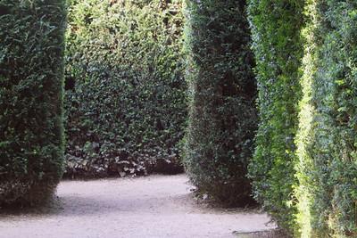 Entering the Maze.