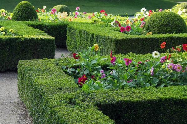 A carefully sculpted Chatsworth garden