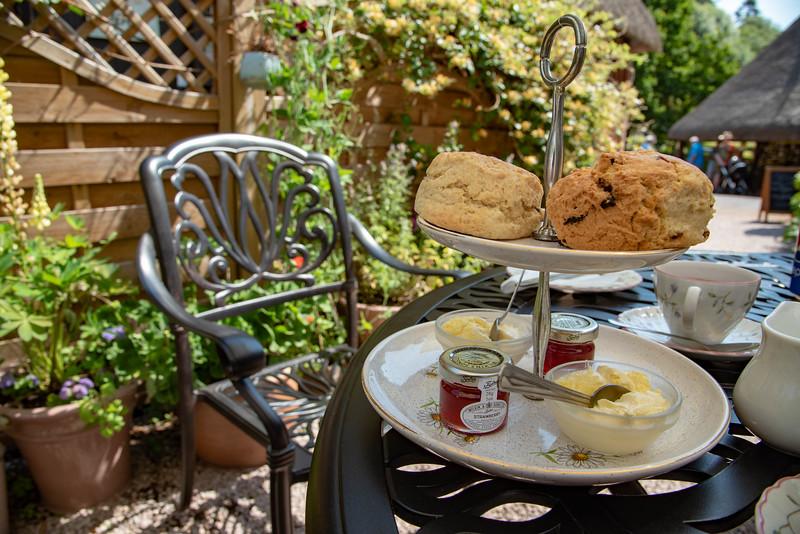 english tea gardens