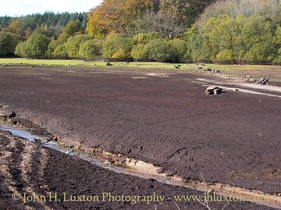 Fernworthy Reservoir, Dartmoor, Devonshire - November 01, 2003