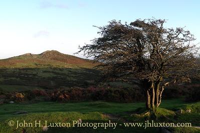 Sharptor, Dartmeet, Dartmoor - October 23, 2013