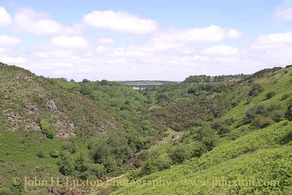 Meldon Viaduct, Dartmoor - June 02, 2011