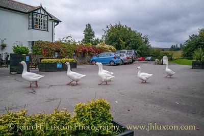 Two Bridges Hotel, Dartmoor, Devon - September 12, 2021