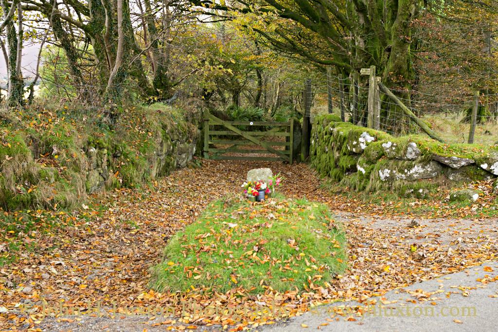 Jay's Grave - Octpober 28, 2016
