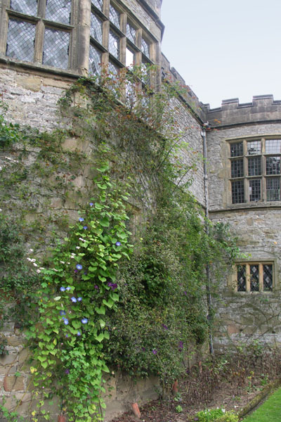 Closeup of Haddon Hall. Since the 16th century, the Haddon family has been the domain of the Vernon (boar insignia) and Manners (peacock insignia) families, which intermarried. The Manners family still live there.