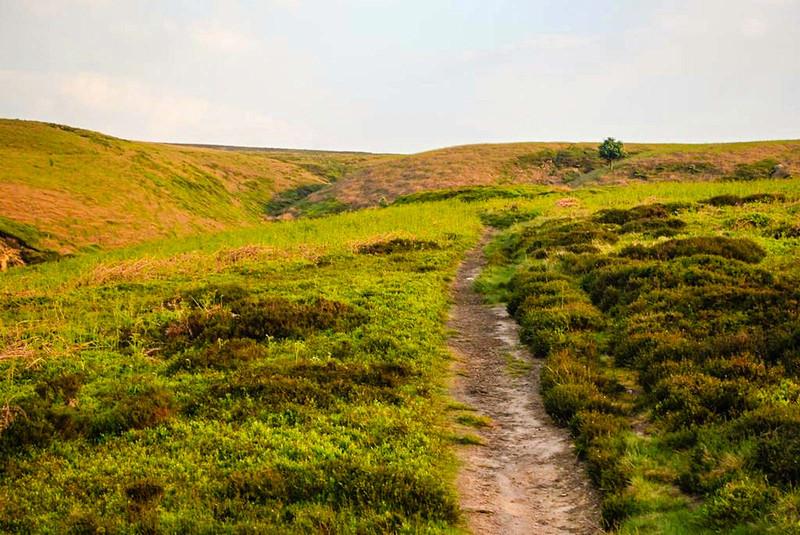 ilkley moor walking trails