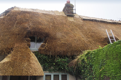 A thatched cottage where men were repairing the roof
