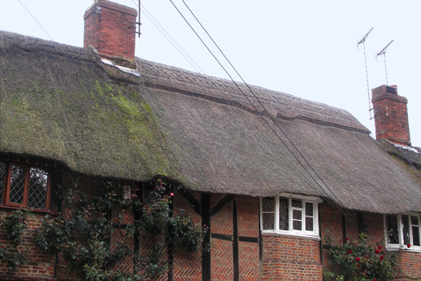 Thatched cottage in Dummer