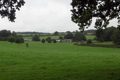 This is the field where George Austen's rectory - Jane's birthplace and home - used to be. The rectory is believed to be in the distant right. Her family's farm and gardens were also here.