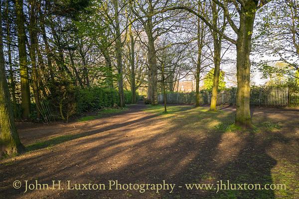 Calderstones Park, Liverpool - April 14, 2020