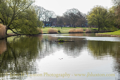 Greenbank Park, Liverpool, Merseyside - April 07, 2020