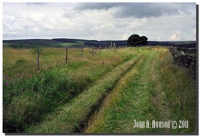 1389_2001011-R1-C3-NCS-England : Farmland towards Sheffield's western boundary.