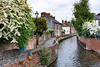 A canal with homes in the city of Salisbury, Wiltshire, England, Great Britain, Europe.