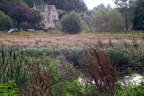 The water meadow in Bibury