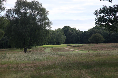 WaltonHeath_Old07Tee_2308